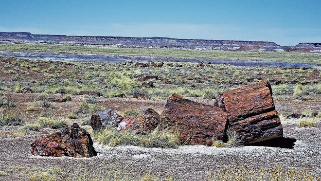 Giant petrified logs dot the landscape in the Petrified Forest National Park.