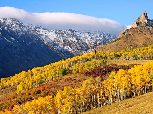 The Colorado autumn aspen show typically begins in mid-September and runs through mid-October. Last Dollar Road, a winding dirt road