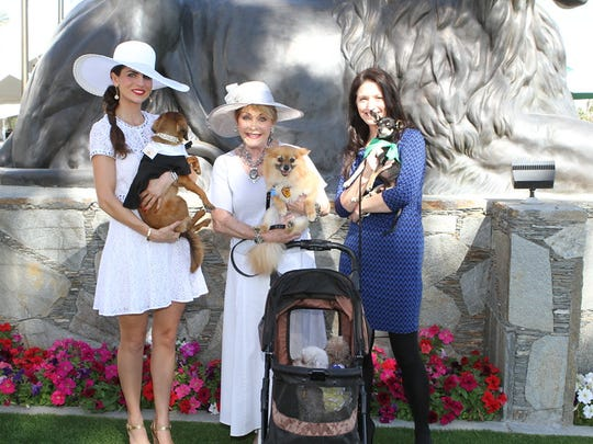 Bianca Rae with dog Jack, Lindi Biggi with Cocoa, Bambi and Rudy, Alicia Bailey with Alan.