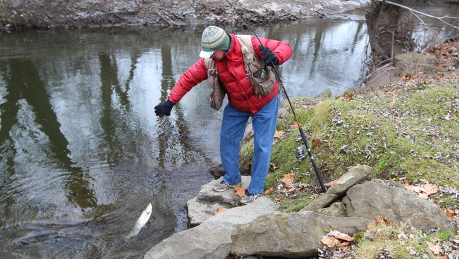 Stan Peck, of Fairport, takes advantage of the lack of snow to fish in Irondequoit Creek where it flows through Ellison Park. Peck caught and released this brown trout.