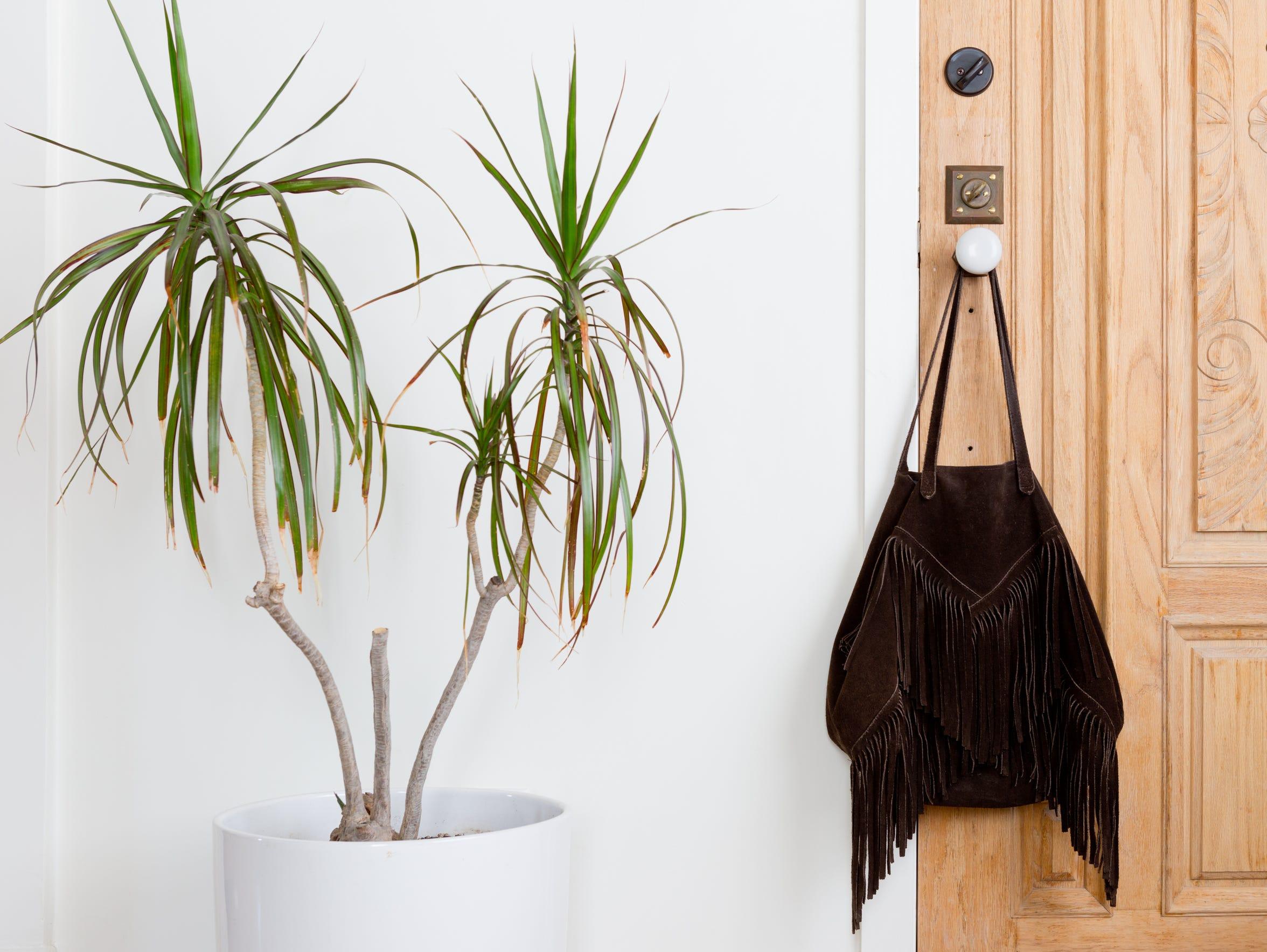 Lasso Abode fringe purse.