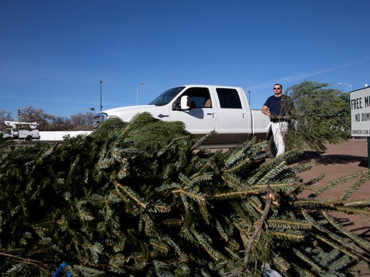JD Randolph recycles his old Christmas tree for mulch on Thursday at Berg Park.