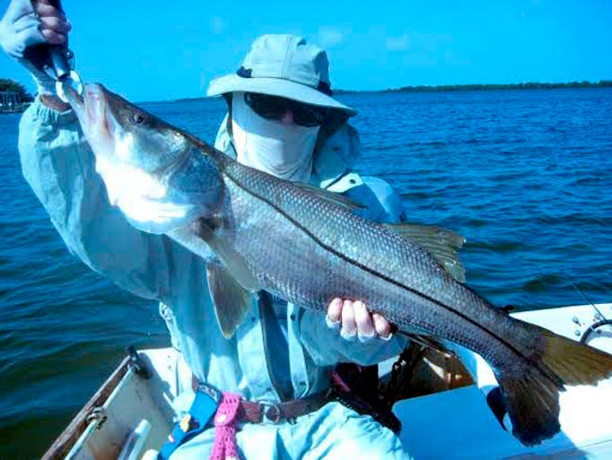 Admiral Gammon's dandy snook was one of four oversize linesides released Sunday in northern Pine Island Sound with St. James City Capt. George Grosselfinger.