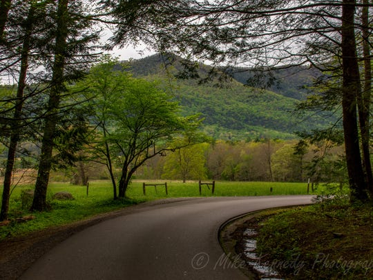 Mike Kennedy took this photo at Cades Cove in April