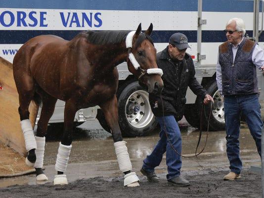 Belmont Stakes American Pharoah Arrives Horse Racing