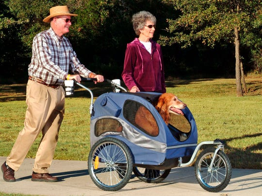 Solvit Pet Products'  bicycle trailer with strolling