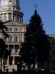 The Capitol tree pictured on Wednesday, Nov. 16, 2016 in Lansing. The tree has been moved forward after the bollards were added in front of the Capitol, meaning the tree is smaller than it has been in previous years.