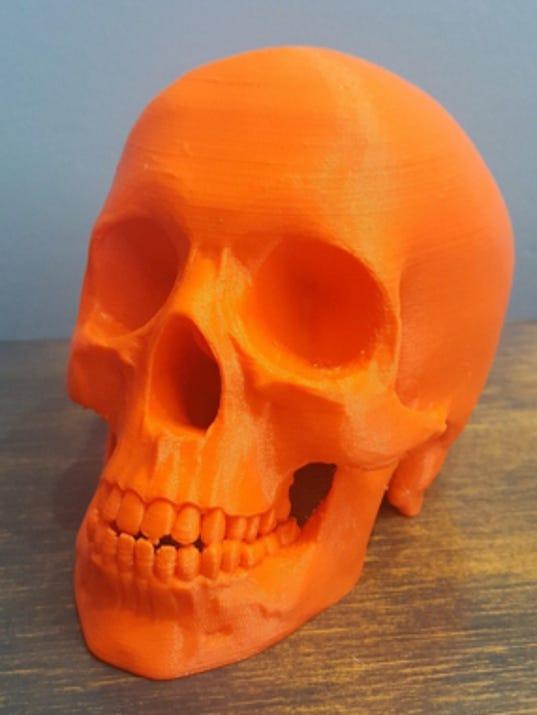 636573029676859658-3d-ex4-3d-printed-skull.jpg