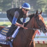 George Alverez, exercise trainer for American Pharoah, rides the Triple Crown Winner at Monmouth Park in Oceanport, in a workout ahead of Sunday's Haskell Invitational.