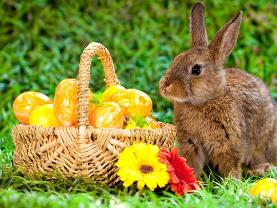 Easter Bunny and eggs.