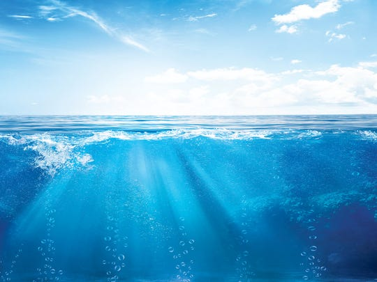 The world's oceans, which are all really just one large body of water surrounding the continents, are in trouble. Humans have filled the sea with tons of plastic, caused the water temperature to increase, and extracted an unsustainable amount of creatures from the water. Pollution in the ocean is a well-known concern. There may be […]