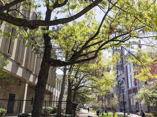 Rutgers University-Newark.