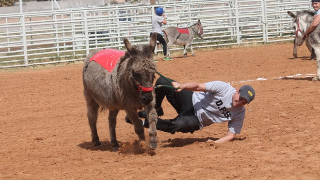 The Otero County Sheriff's Office and Holloman Air Force Base's firefighter are scheduled for a donkey baseball rematch on March 17. Donkey baseball follows the traditional rules of baseball but the twist is that each player is on a donkey, except the pitcher and catcher.