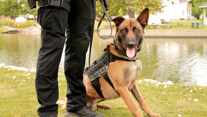 Lafayette police K9 Rocky was attacked Thursday night by a loose dog during a foot chase. Rocky's partner, Lafayette police officer Austin Schutter, was forced to shoot and kill the attacking dog.