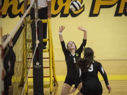 Daleville's Zannah Weber prepares to set the ball in