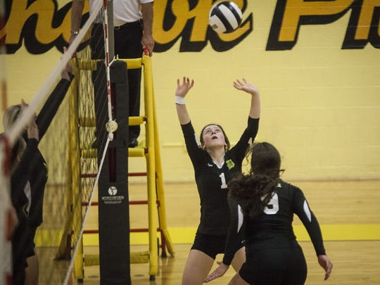 Daleville's Zannah Weber prepares to set the ball in a match against Cowan in the Cowan Sectional championship on Oct. 24.