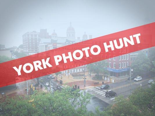 636360784946779054-york-photo-hunt.jpg