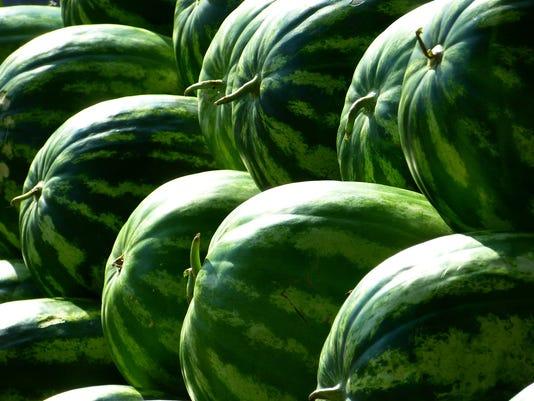 WSF stock-melons-197025-1920.jpg