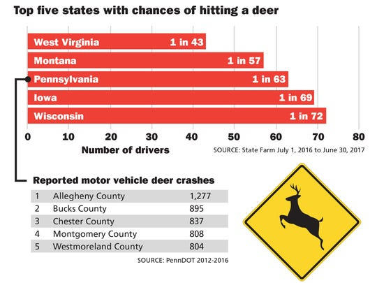 Pennsylvania ranks third in the nation for chances of hitting a deer while driving