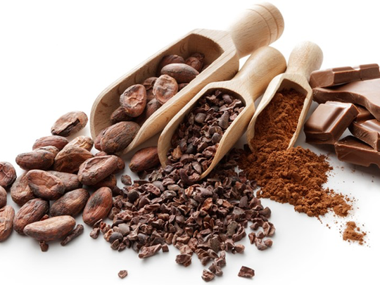 From left to right: cacao bean, cacao nib, cocoa powder and chocolate.
