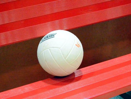 VolleyballPromo3.jpg
