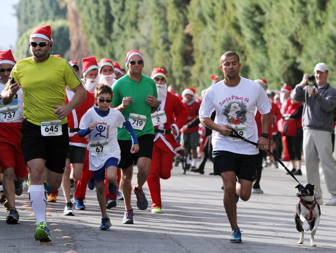 Image result for santa paws 5k palm springs