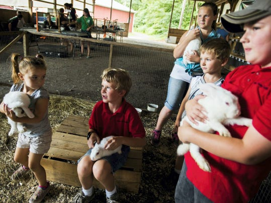 Alayna Taylor, 4, of Hanover, at left, goes to take a seat Wednesday in a pen of New Zealand White rabbits with Cole Dean, 9, of Fayetteville; Abigayle Dean, 10, background; Caleb Dean, 5, right background; and Clayton Kuhn, 9, of Aspers, right. Members of the Apple Country Rabbit Club and the Adams County Rabbit 4-H brought the rabbits to the South Mountain Fair.