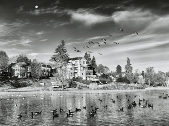 Photographer Linda Norman took this black-and-white photo of waterfowl at Children's Lake, Boiling Springs. Norman will offer tips for outdoor photography April 16 on a photo hike along the Appalachian Trail near Boiling Springs.?