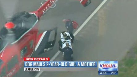 Emergency workers take a 2-year-old girl to a helicopter to be transported to the hospital after being attacked by a pit bull Monday, March 31, 2014. The girl had severe injuries to her face and head. The girl's mother, who also was injured, was pet sitting the dog for her boyfriend.