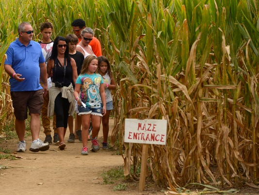 Corn Maze and Fun Festival 1