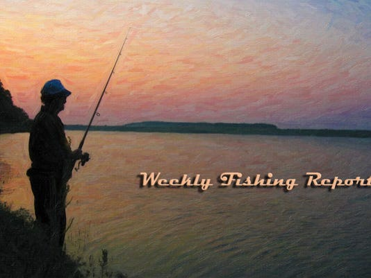 weeklyfishingreportheader_6413431_ver1.0_640_480.jpg