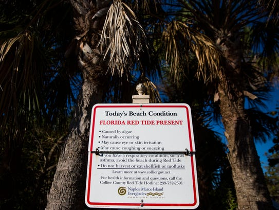 Signs indicate the presence of red tide on Tuesday,