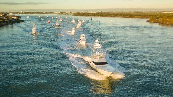 The fleet competing in the Pelican Yacht Club Invitational Billfish Tournament heads through the Fort Pierce Inlet Thursday morning before catching and releasing over 100 sailfish on the day.