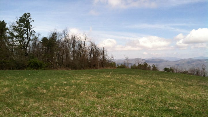 Fairview, Chemtronics land conserved for wildlife habitat, climate resiliency