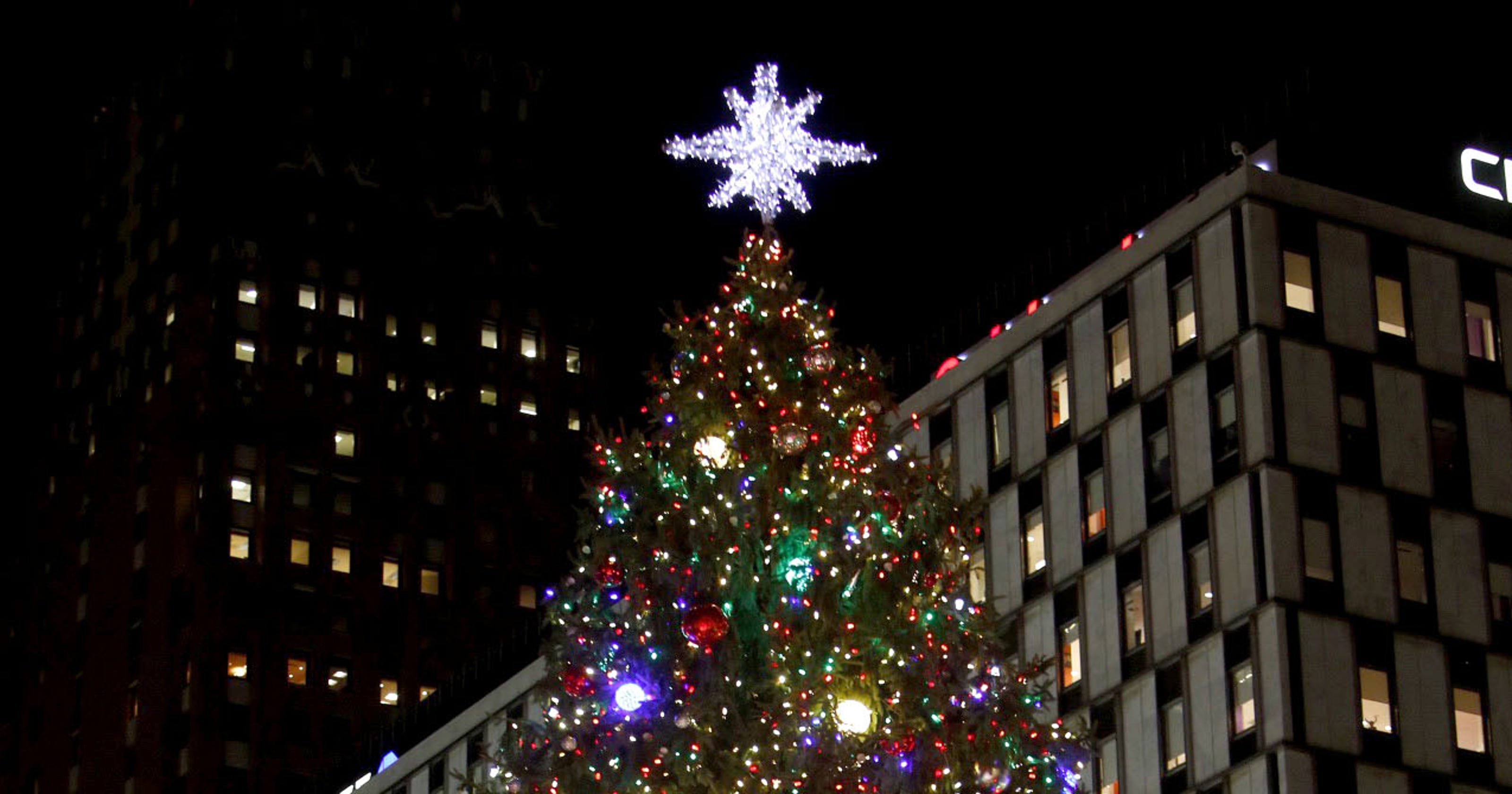 Norway Spruce To Serve As Annual Detroit Christmas Tree