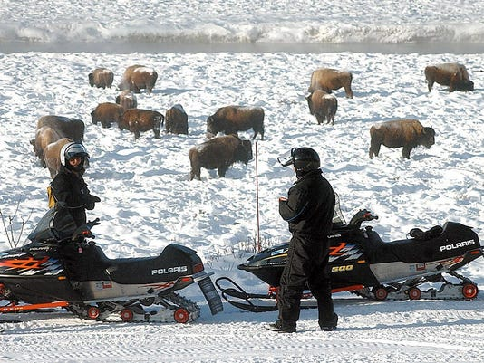 BISON SNOWMOBILE YELLOWSTONE