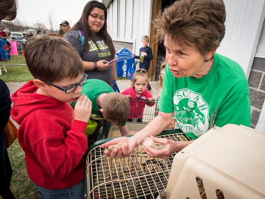 Cole Goodman, 11, right, looks at a newborn baby chick held by Donna Wojtysiak at Earth Fair, held Friday, April 27 at Goodells County Park.