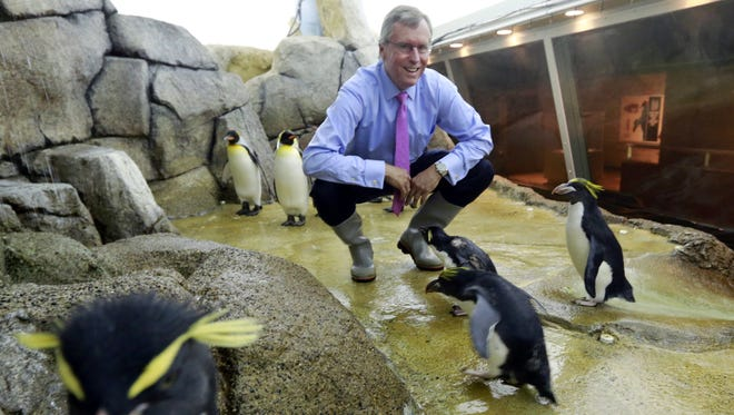 Detroit Zoo board member Stephen Polk spends a moment among rockhopper, macaroni and king penguins after the announcement of his $10-million donation toward building the Polk Penguin Conservation Center in Royal Oak, on Sept. 18, 2013.
