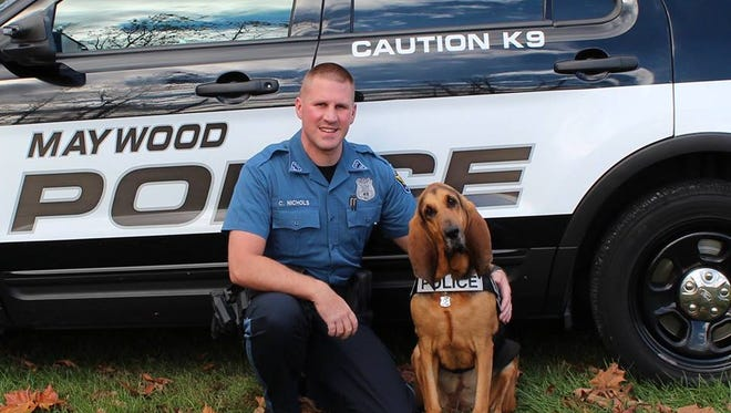 Zoey, a K-9 with Maywood police, helped investigators identify the suspect in the fatal hit-and-run accident in North Bergen earlier this week.