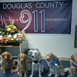 Comfort dogs from Lutheran Church Charities' K-9 Comfort Dog Ministry at the dispatch center in Roseburg, Oregon. The dogs met with dispatchers who received the first calls from students at Umpqua Community College on Oct. 1. A Fort Collins dog, Cubby, is part of the team.