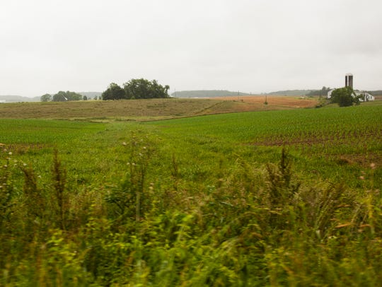 Crops grow on the land that Augusta County is attempting