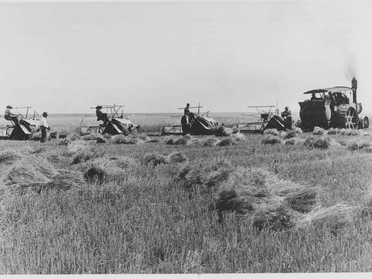 Early mechanization of agriculture increased early