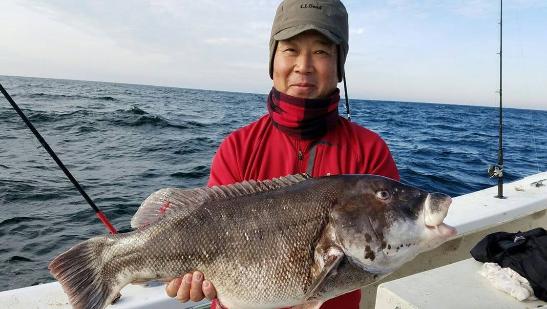 Jeff taviano 39 s delaware regional fishing report for Wilmington fishing report