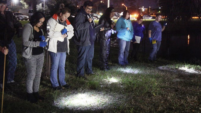 Students of Dennis Fahey's Crime Scene class perform a line search on Crime Scene Island which is part of the FSW campus.
