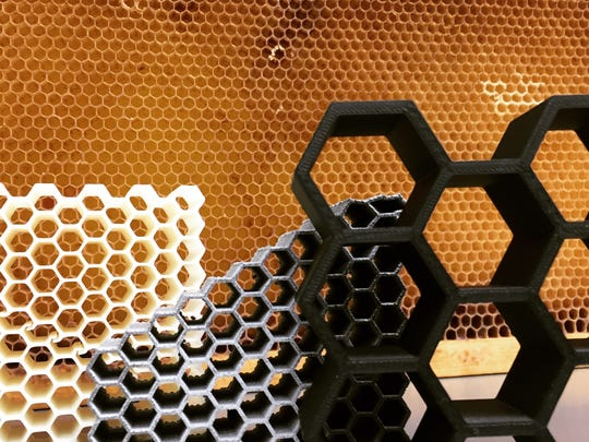 Examples of honeycomb structures printed by Dhruv Bhate in front of its real life inspiration.