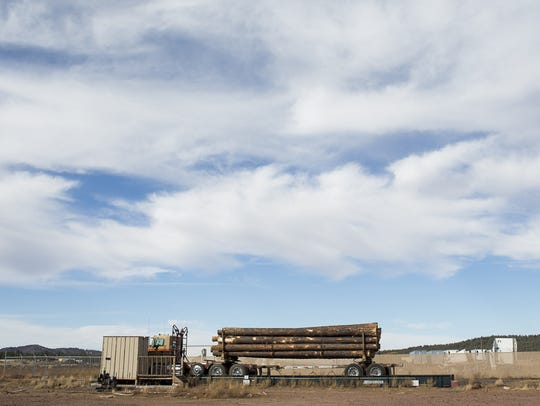 Tree logs are weighed at the Grand Canyon Forest Products