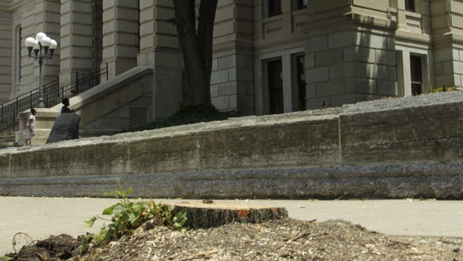 The County Commissioners have ordered the removal of trees around the courthouse. The trees will be replaced with trees that can withstand urban environments,