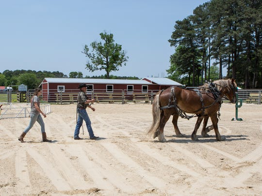 Two Frontier Town workers walk a pair of horses through