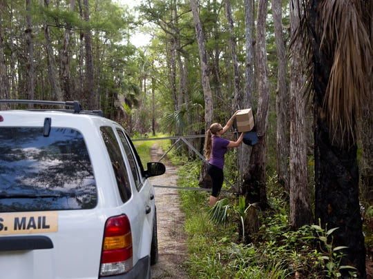 "Brittany Potter, 25, the one and only mail carrier for the Ochopee Post Office, drops off a package at a household nestled deep in the swamps of the Big Cypress National Preserve Friday, August 5, 2016 in Ochopee, Fla. Potter enjoys the job and the relative solidarity that comes with it. ""I love my job,"" she said. ""I'm a nerd down here. There's very few of them, but we exist."""