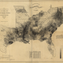 A map based on census data from 1860 shows the distribution of the slave population of U.S. southern states. Analysts have compared the image to modern maps illustrating the present-day rates of diseases and other health outcomes, between which there are similarities.